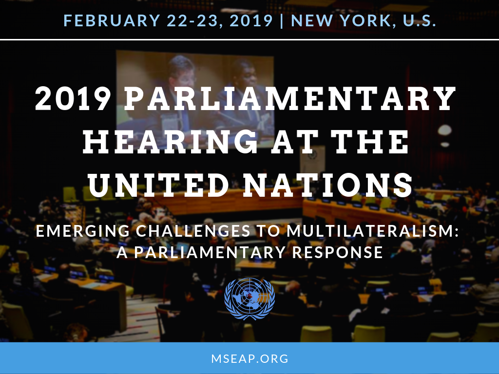 2019 Annual Parliamentary Hearing at the United Nations